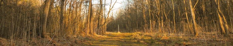 Canie Creek Greenway