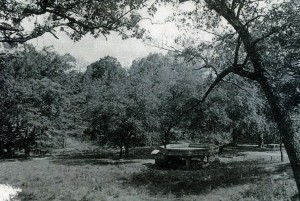 View of Sulphur Springs circa 1920